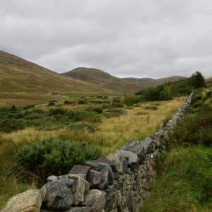 Grassland - Lake District