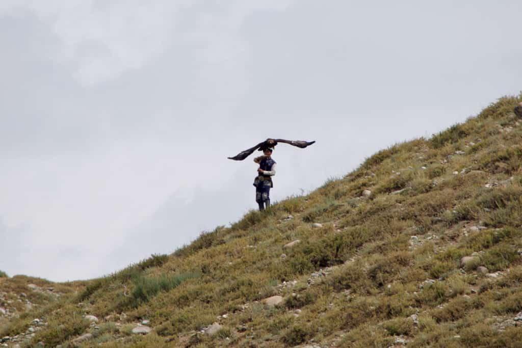 eagle hunter 4