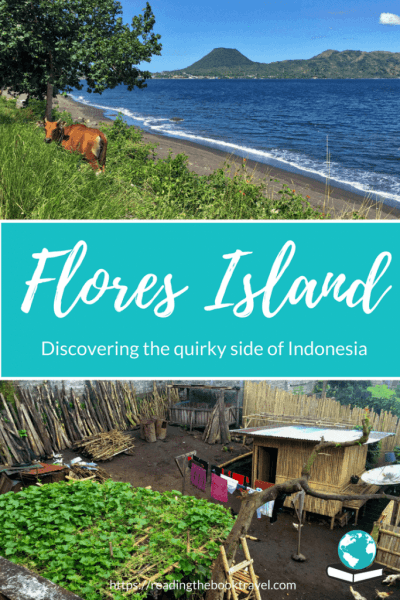 Get a glimpse of what to see on Flores Island Indonesia, as I discover this beautiful island and experience its quirky side in the little town of Bajawa! Check out why you should visit Flores Indonesia for yourself... #floresindonesia #visitindonesia