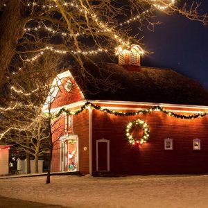 Christmas Lights - Christmas Day