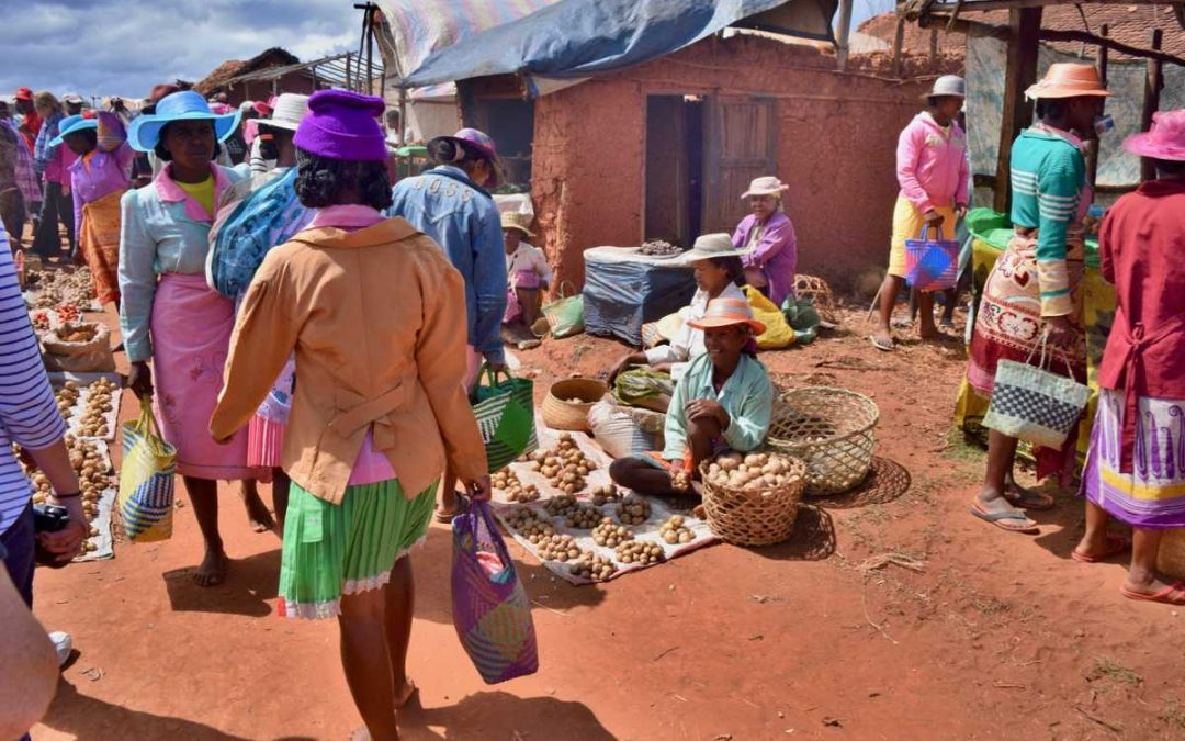 An African market day: The local market at Camp Robin, Madagascar