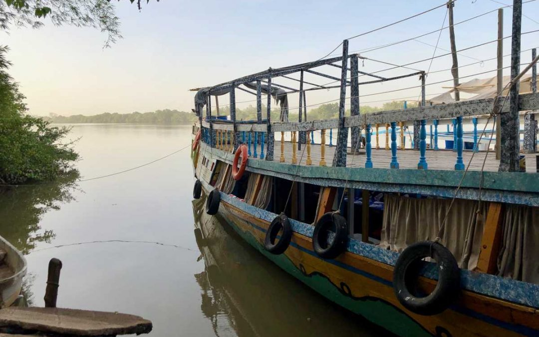 Taking a River Gambia tour: the ultimate Gambian experience
