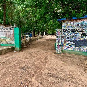 Kachikally Crocodile Pool - Travel