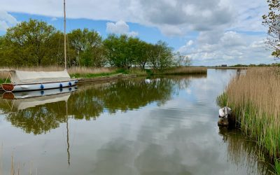 Things to do on the Norfolk Broads: Boat trips, windmills and a perfect day out