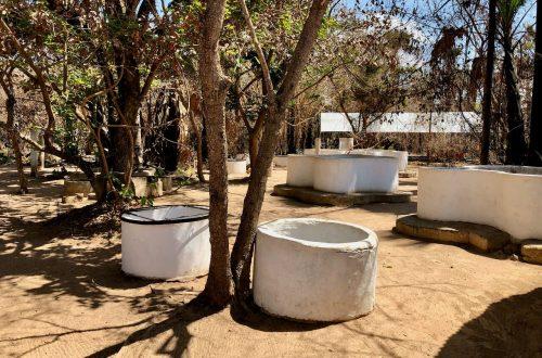 Kachikally Crocodile Pool - The Gambian Reptiles Farm